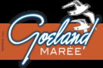 Goeland Marée